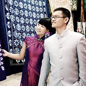 Mandarin Collar Short / Mini Short Chameleon Cheongsam / Qipao / Chinese Dress (HGQP207)