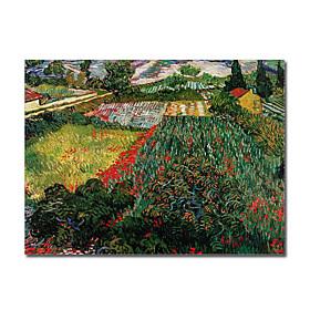 Reproduccion Campo De Amapolas Van Gogh