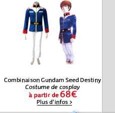 Combinaison Gundam Seed Destiny
